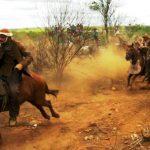 Festa do Vaqueiro pode ser Patrimônio Cultural Imaterial de Sergipe