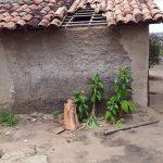 Idosa tem casa invadida e é estuprada em povoado de Capela