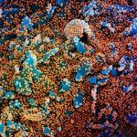 Infecções globais por coronavírus tem 1 milhão de casos em 100 horas